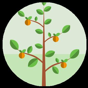 Abonos orgánicos y fertilizantes ecológicos | Línea Idai
