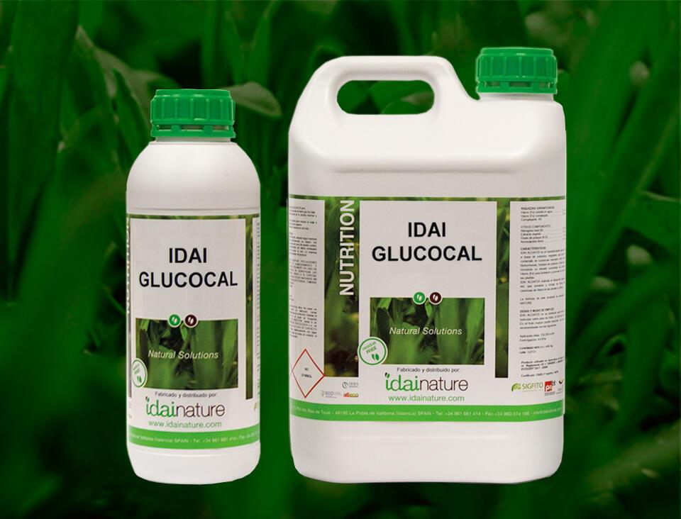 IDAI-GLUCOCAL