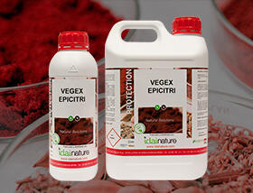 VEGEX-EPICITRI