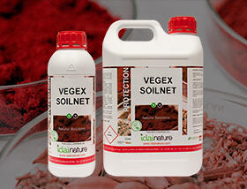 VEGEX-SOILNET