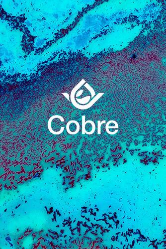 Cobre - Línea Idai