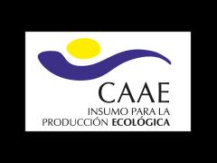 logocaaecolor