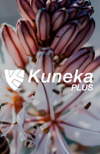 Kunena Plus