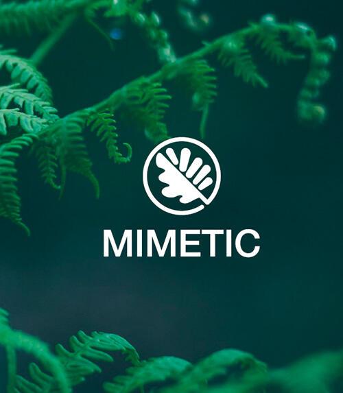 minetic