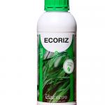 Ecoriz