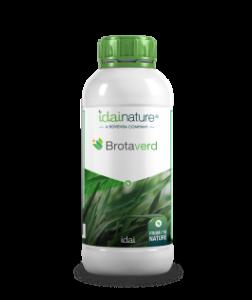 Botella Brataverd