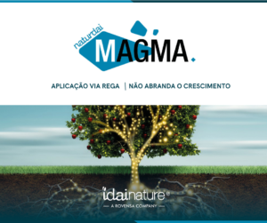 Magma Idai Nature