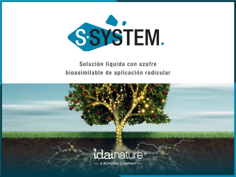 Conoce S-System