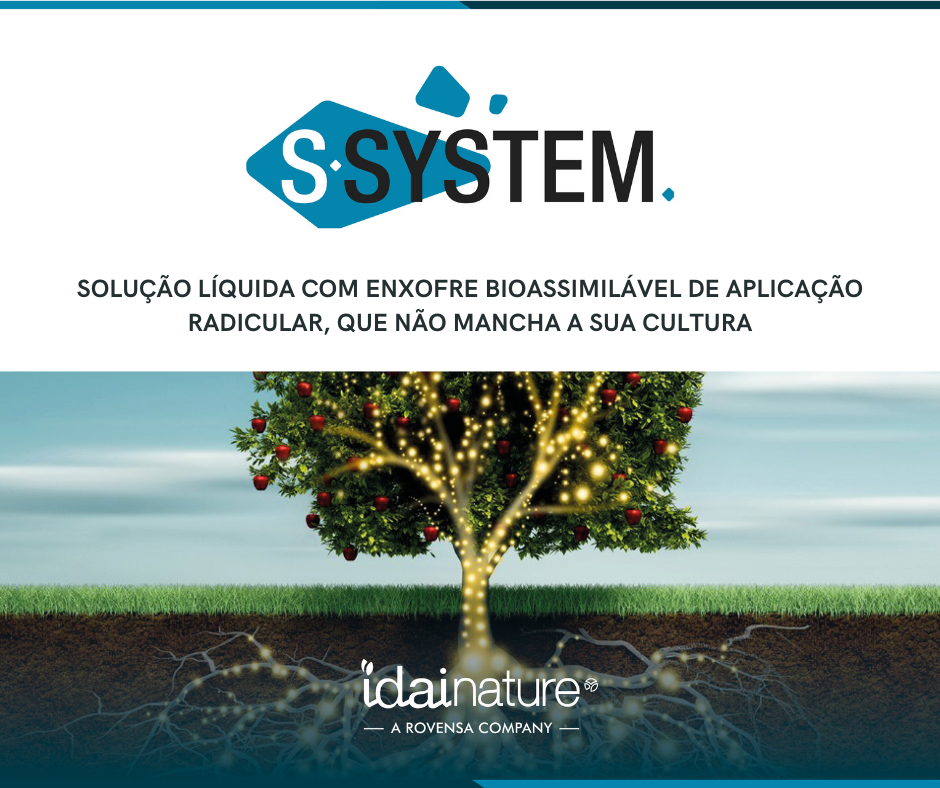 S-SYSTEM